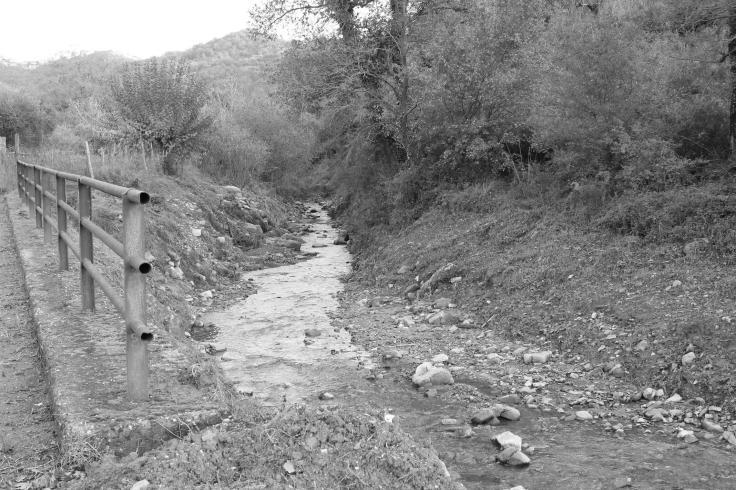 Questo ruscello scorre vicino la casa in cui sono cresciuto...e che oggi non c'è più. Ci andavo spesso d'estate. Pur non trovandovi mai forme di vita diverse dai girini ero sempre felice di starmene lì a toccare l'acqua e a giocare con i sassi.